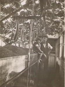 Ernst-Moser